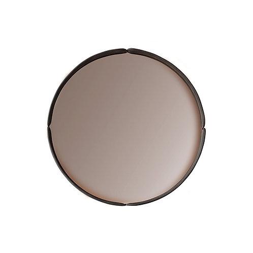 Mirror 4220