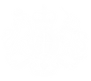 gov logo white.png