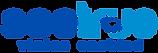 seetrue web logo.png