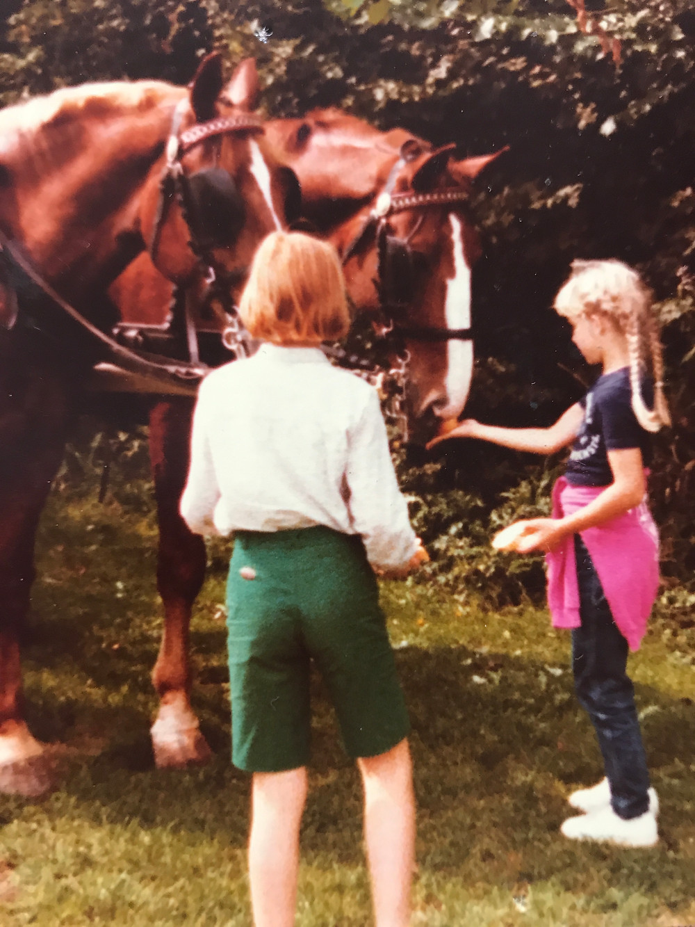 Two-little-girls-feeding-horses-before-carriage