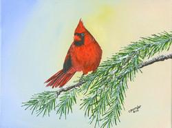 Cardinal  9x12-Edit-120dpi-sRGB.jpg