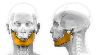 formation Articulation temporo-mandibulaire