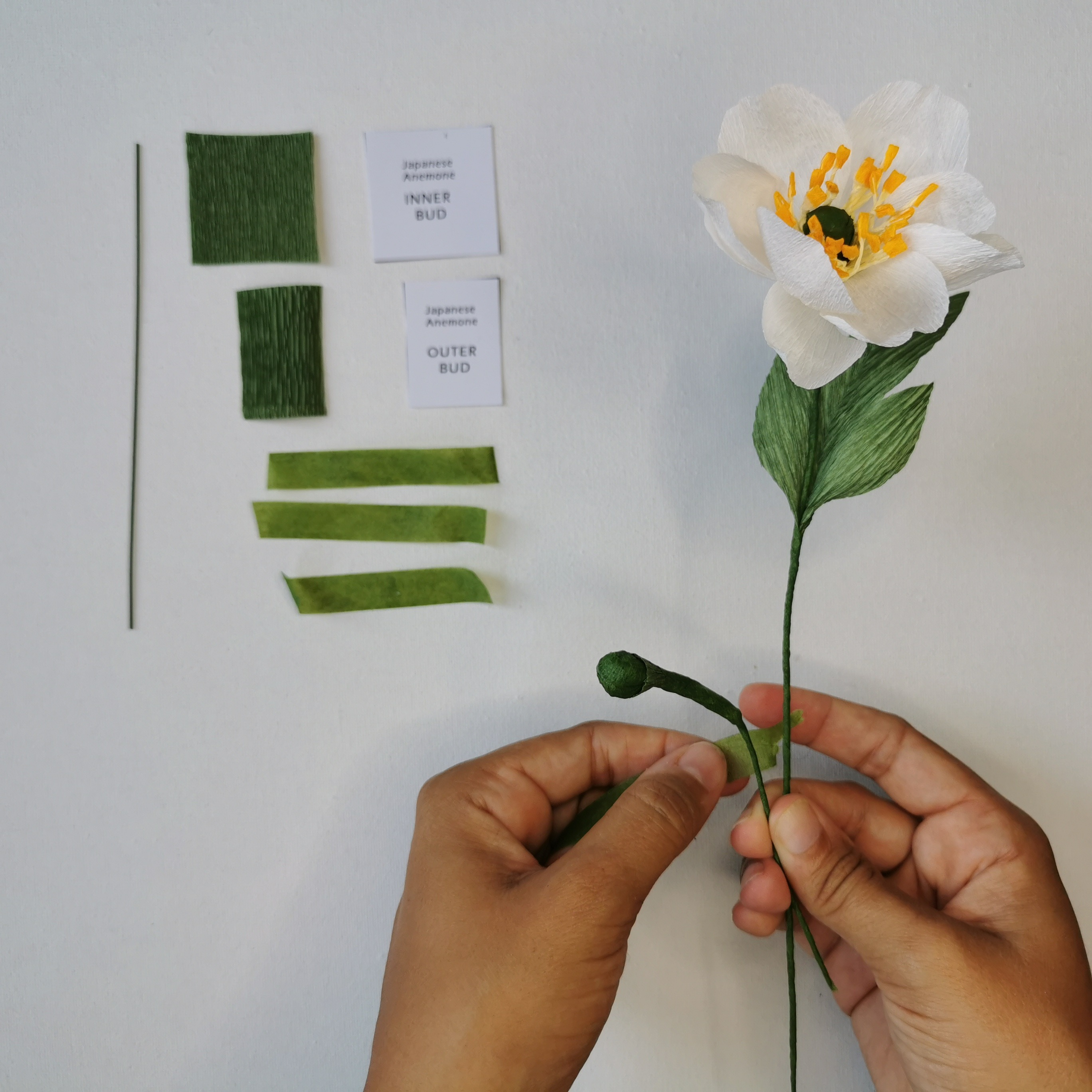 Paper Japanese Anemone Kit