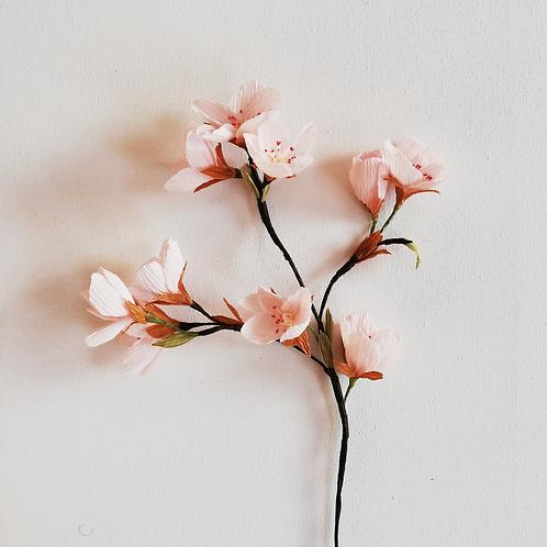 Paper Blossom Materials