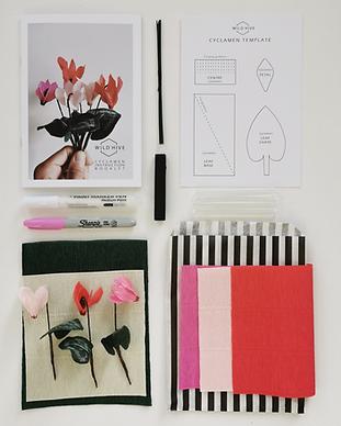 Paper Cyclamen Kit.png