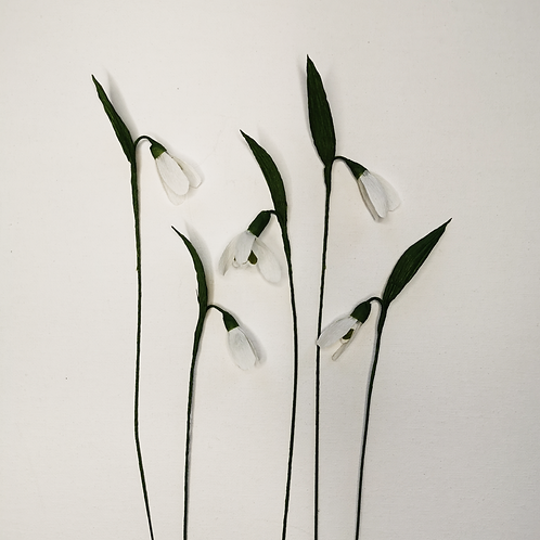 Paper Snowdrops 4th, 5th or 7th February