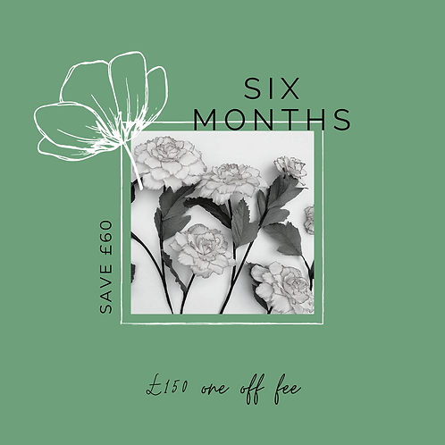 6 Months Paper Flower Kit Subscription