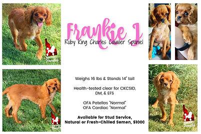 Frankie J collage 2021.jpg