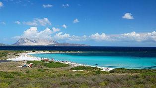 Una spiaggia spettacolare che si estende per circa 500 metri, formata da sabbia bianca e setosa circondata da una folta  macchia mediterranea.