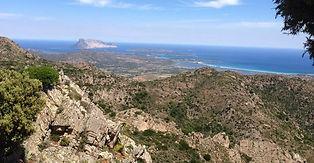 Una montagna a pochi minuti dal mare con un'altezza di circa 950 mt sul livello del mare che regala un panorama mozzafiato tra blu del mare e verde dei boschi