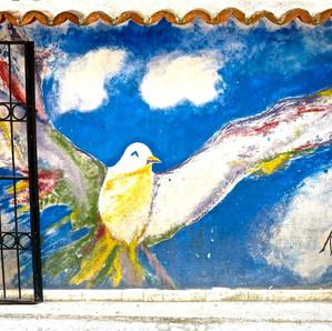 foto di un uccello dipinto