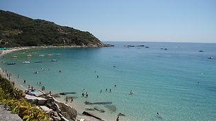 Una spiaggia contornata di una ricca vegetazione di macchia mediterranea, con alle spalle la presenza de monte capanne