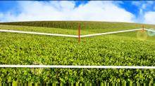 Вынос границ земельного участка в натуру (вынос точек), или  как узнать, где проходят границы участк