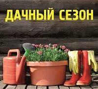 Дачный сезон в Омске откроется уже 29 апреля