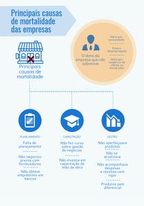 Principais causas da mortalidade das empresas