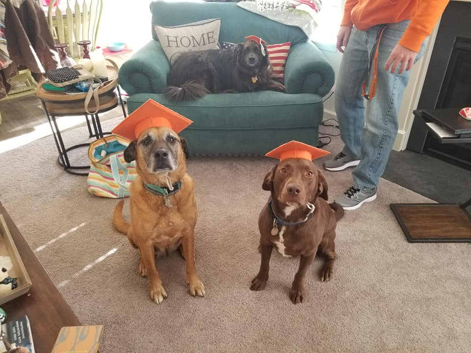 Sammy (older), Tucker (Choc