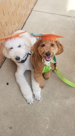 Duffy and Bailey