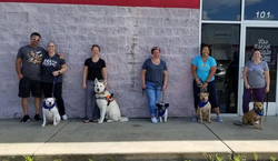 CGC-Sasha,Lakota, Chaz, Willow and Scrappy