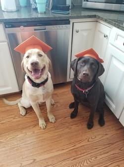 Maxx and Ruby
