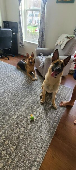 Lola and Jethro