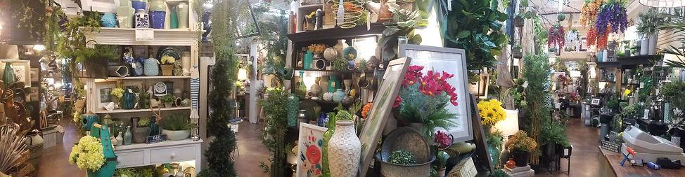 Evergreen pan4.jpg