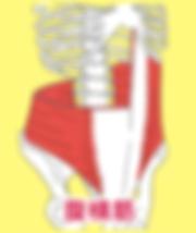 福岡市中央区の整骨院「ごう整骨院六本松院」|ダイエット|猫背|楽トレ|インナーマッスル|治療|福岡市中央区六本松