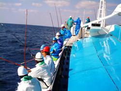 鰹一本釣り漁法