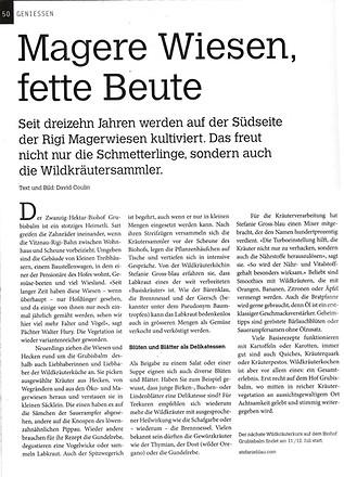 Magere-Wiesen-fette-Beute-Seite1.jpg