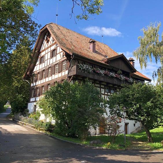 Wildpflanzenspaziergang Alte Mühle Muri