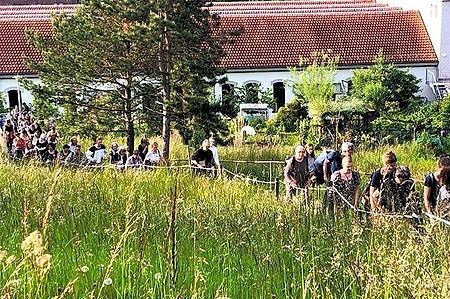 Wildpflanzenspaziergang in Zürich