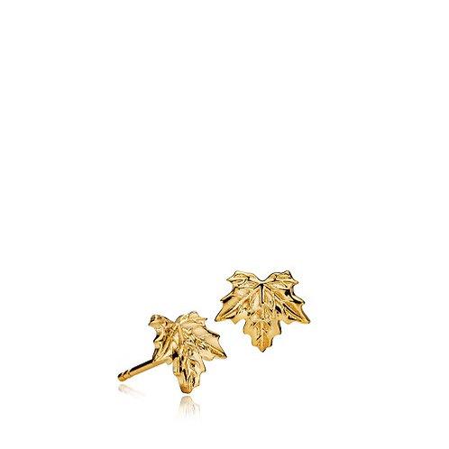 NATURE OHRSTECKER - Silber vergoldet