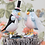 Thumbnail: LOVE ORNAMENT - Love Bird Bride