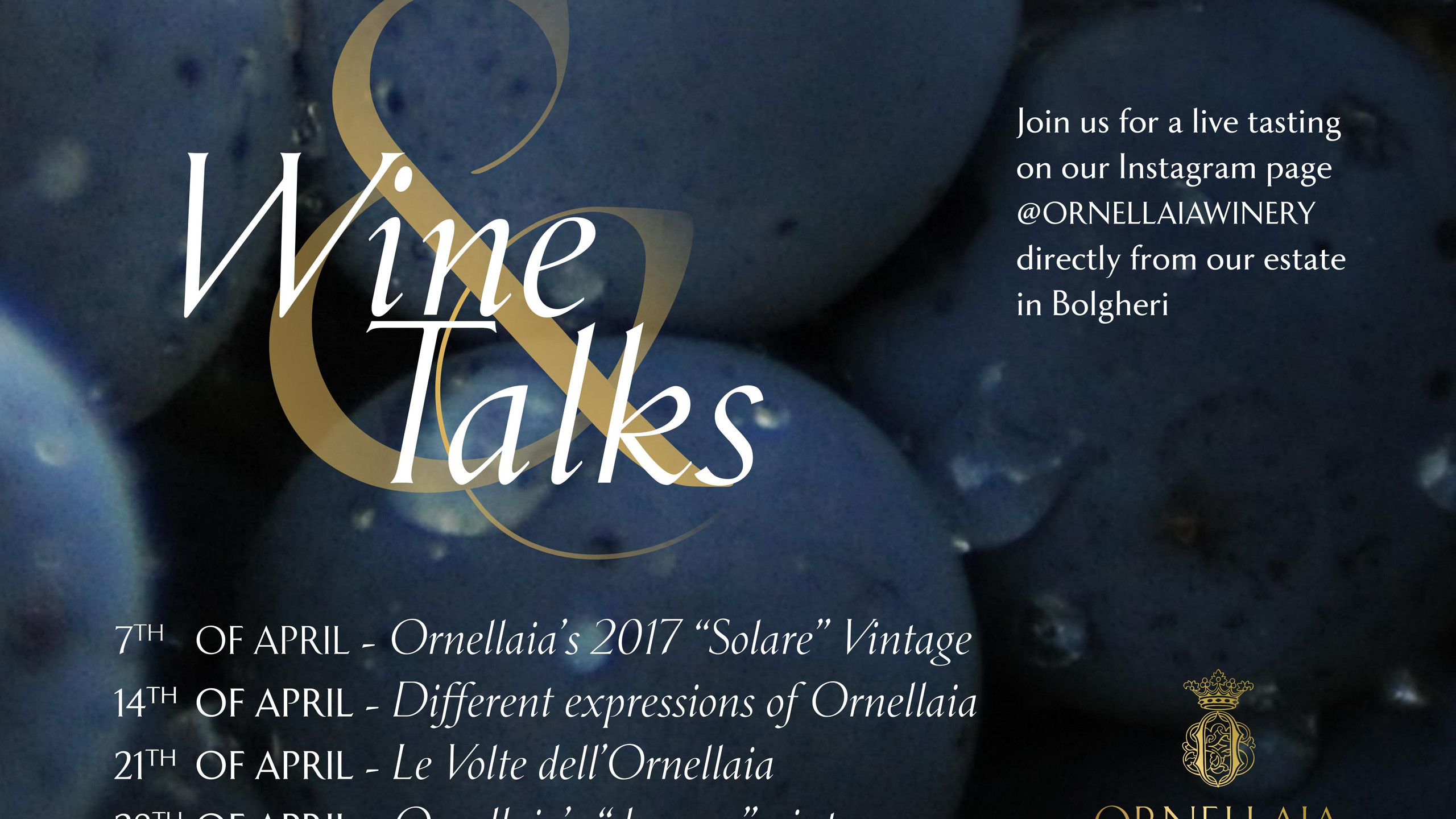 Ornellaia Wine & Talks