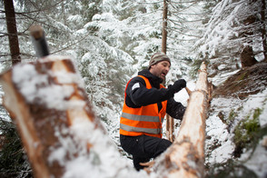 Freiwillig für einen starken Bergwald