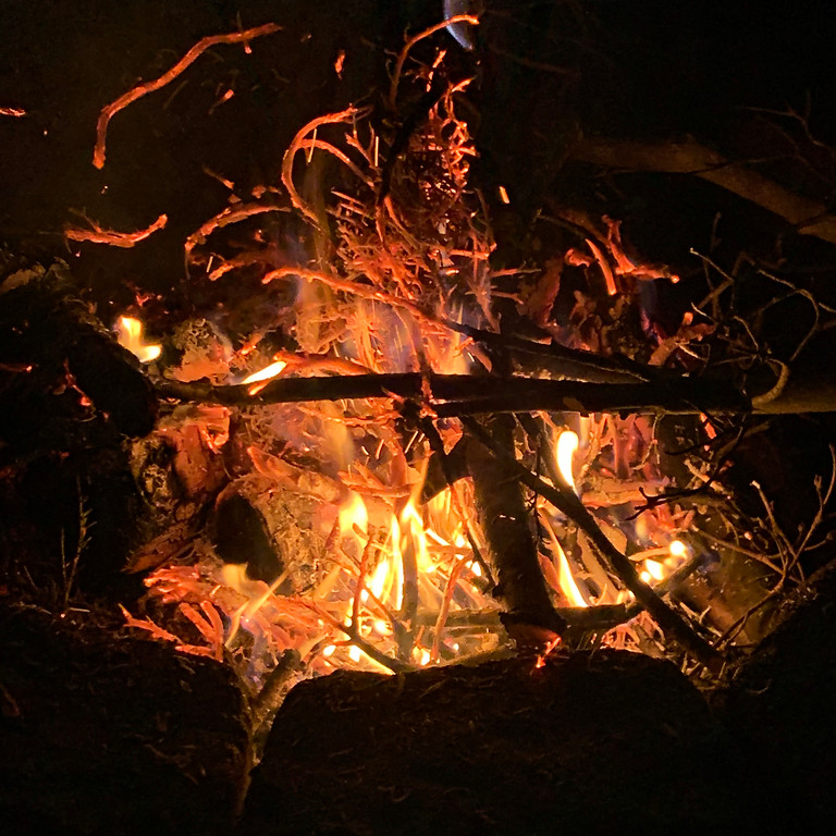Virtual Campfire and Storytelling