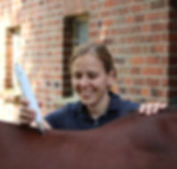 Laserakupunktur Pferd