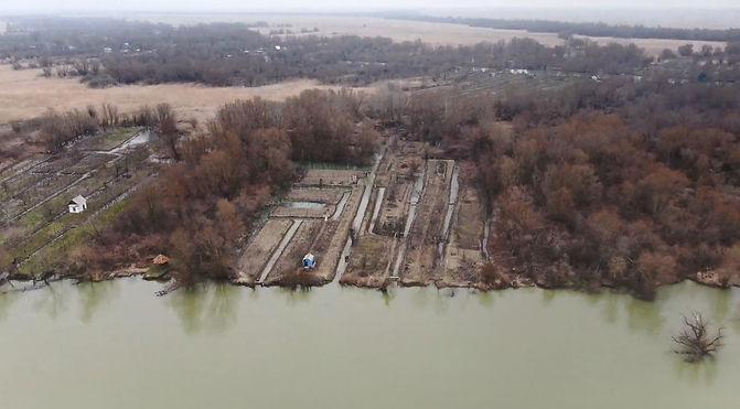 Muddy waters of the Danube.jpg