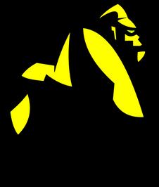 Logo Gorilla Flash.png