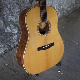 House Guitars SSD