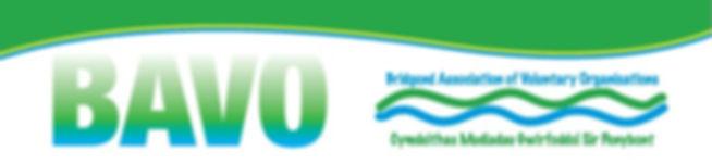 BAVO logo 2.jpg