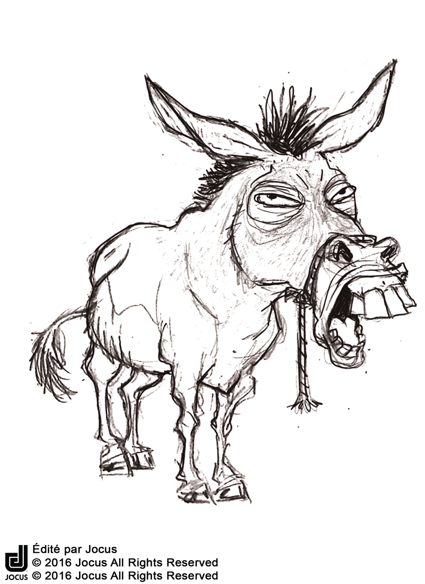 Mule Croquis