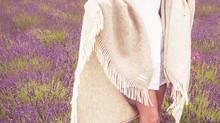Longbarn Lavender Photo shoot