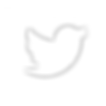twitter-icon-png-5.png