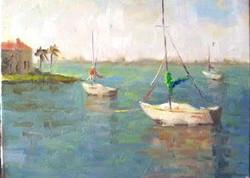another Sarasota bay