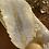Thumbnail: Feather Tray