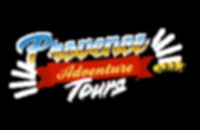 logo_PAT_FINAL_edited.png