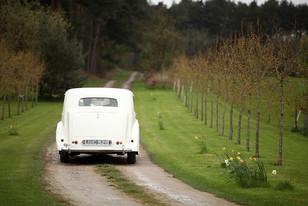 Weddings-car.jpg