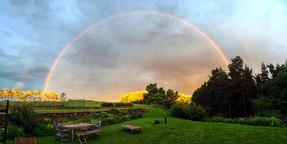 Exterior3-rainbow-garden.jpg