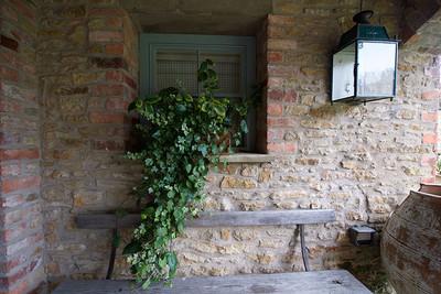 Exterior3-ivy-under-arches.jpg