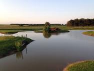 Landscapes-pond2.jpg